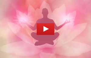 lotus manifestation
