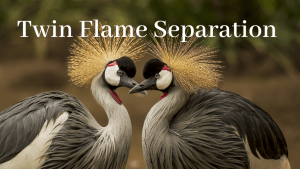 Twin Flame Separation