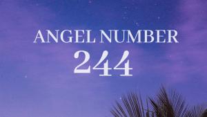 angel number 244