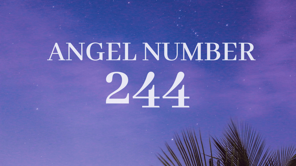 angel number 244