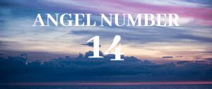 Angel Number 14
